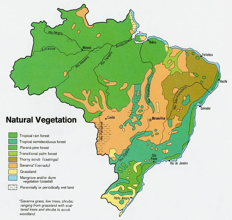 brazil natural vegetation