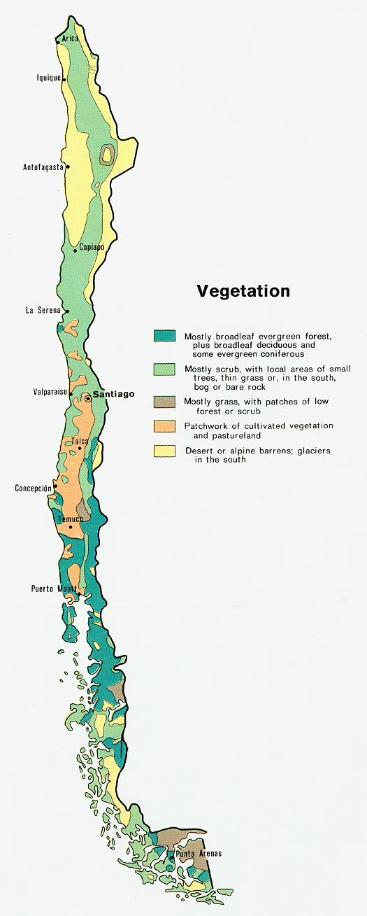 Chile Vegetación Mapa 1972.