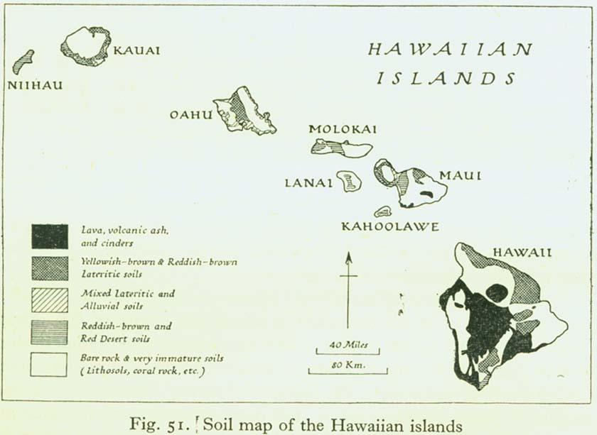 Soils Soil Map Of The Hawaiian Islands