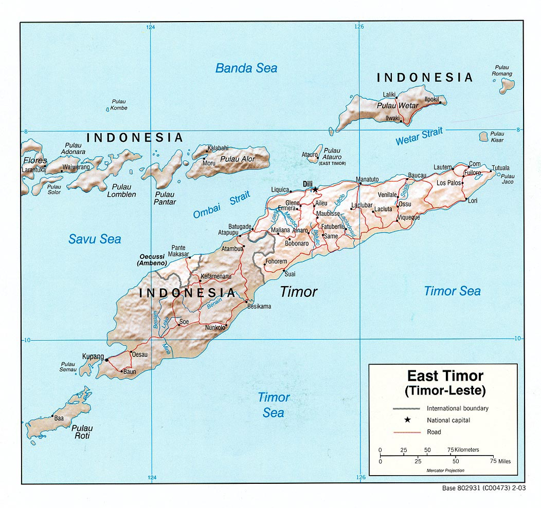 East Timor Maps Perry Casta±eda Map Collection UT Library line
