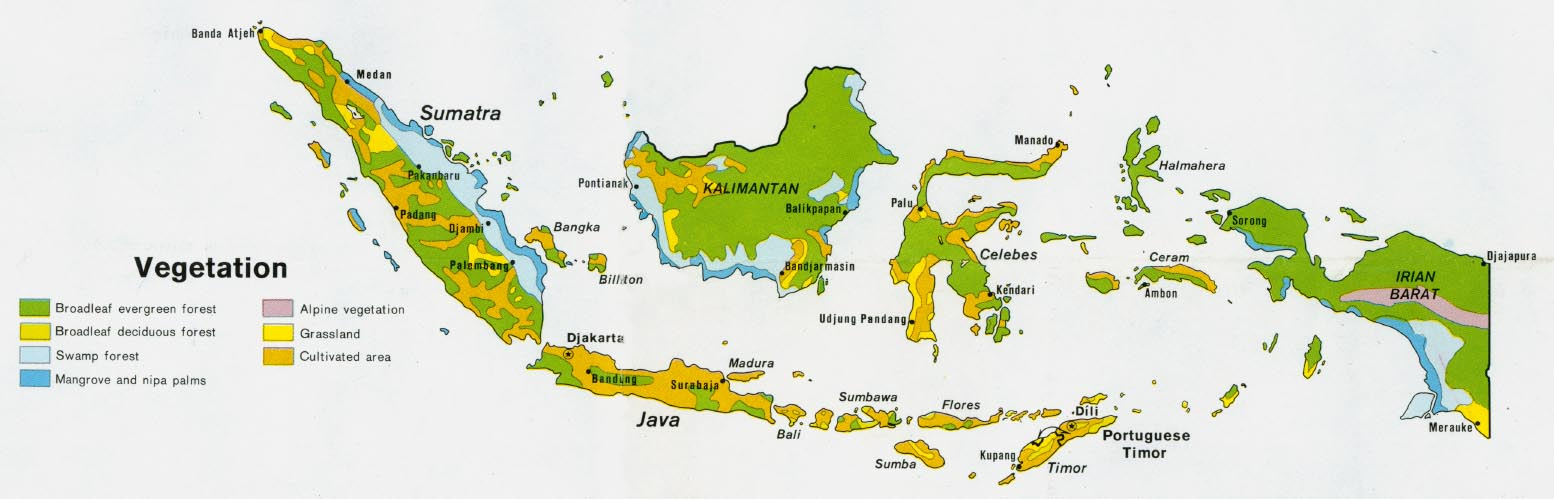 Indonesia maps perry castaeda map collection ut library online indonesia vegetation gumiabroncs Images