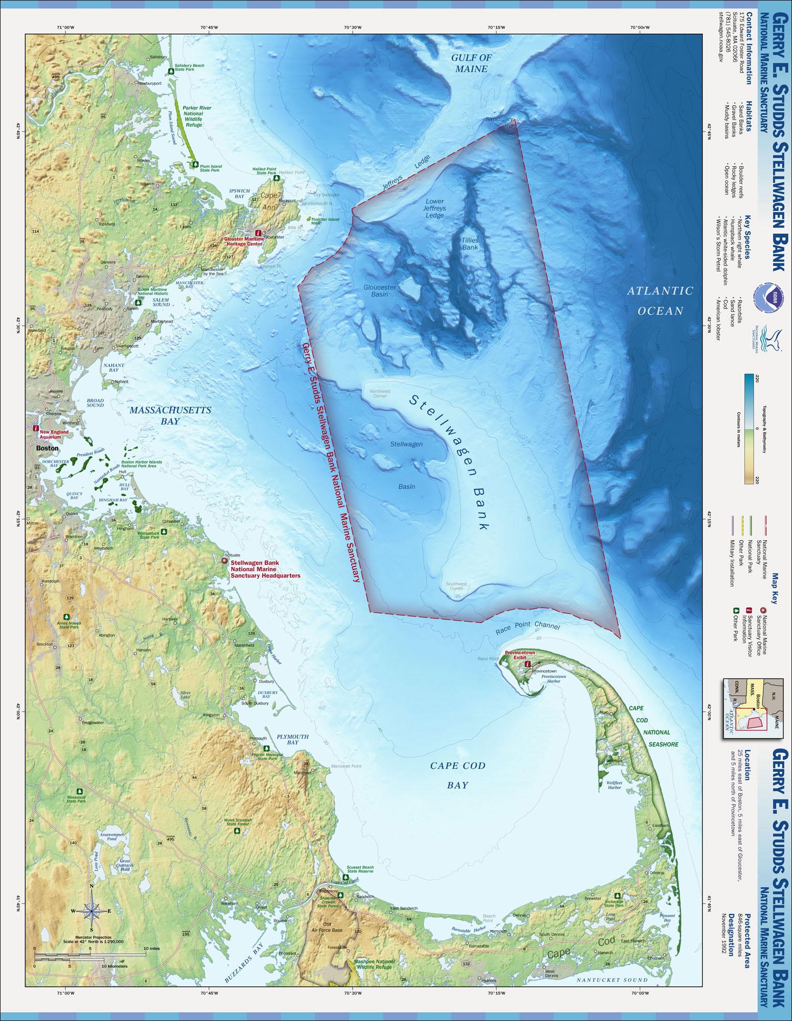 gerry e studds stellwagen bank national marine sanctuary noaa
